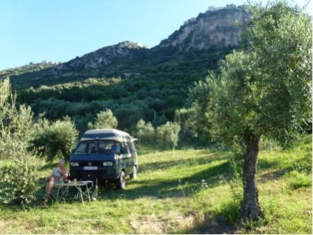 olivenhain kaufen kroatien